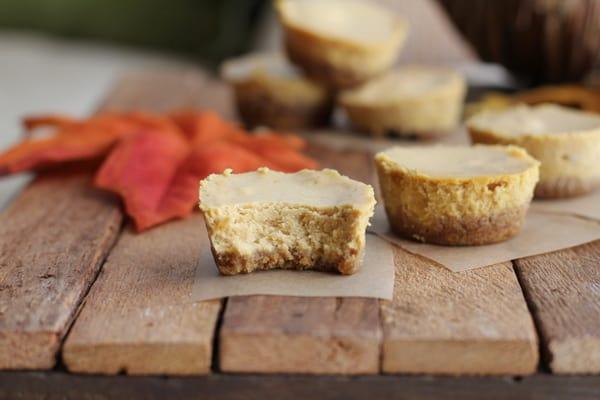 Pumpkin Cheesecake Bites 2 :: Inquiring Chef