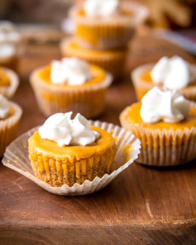 Pumpkin Cheesecake Bites topped with whipped cream