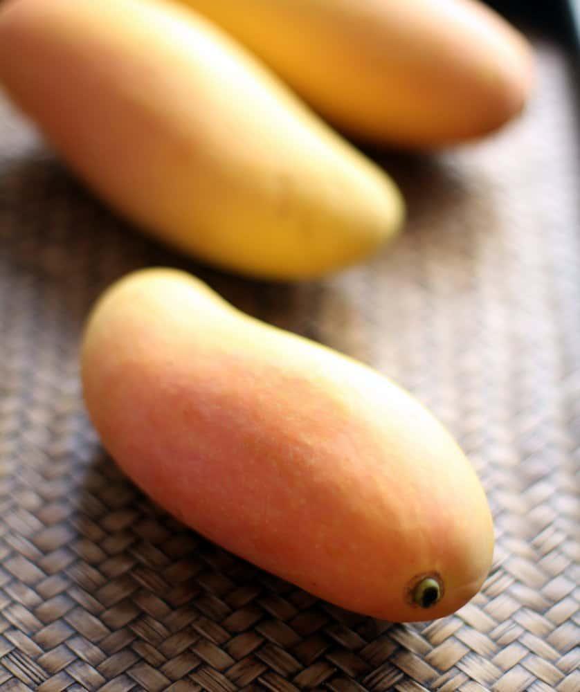 Mangos_Thailand