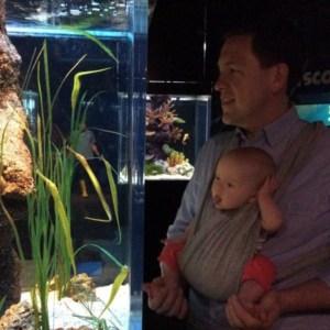Molly and Frank _Siam Aquarium