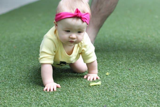 Molly_One Year Crawling