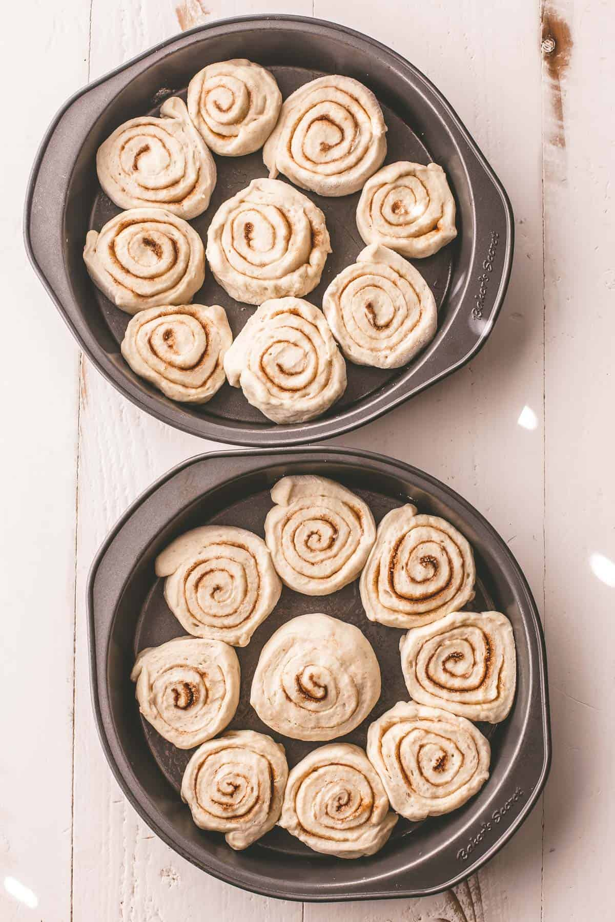 rolled uncooked cinnamon rolls in a round baking pan
