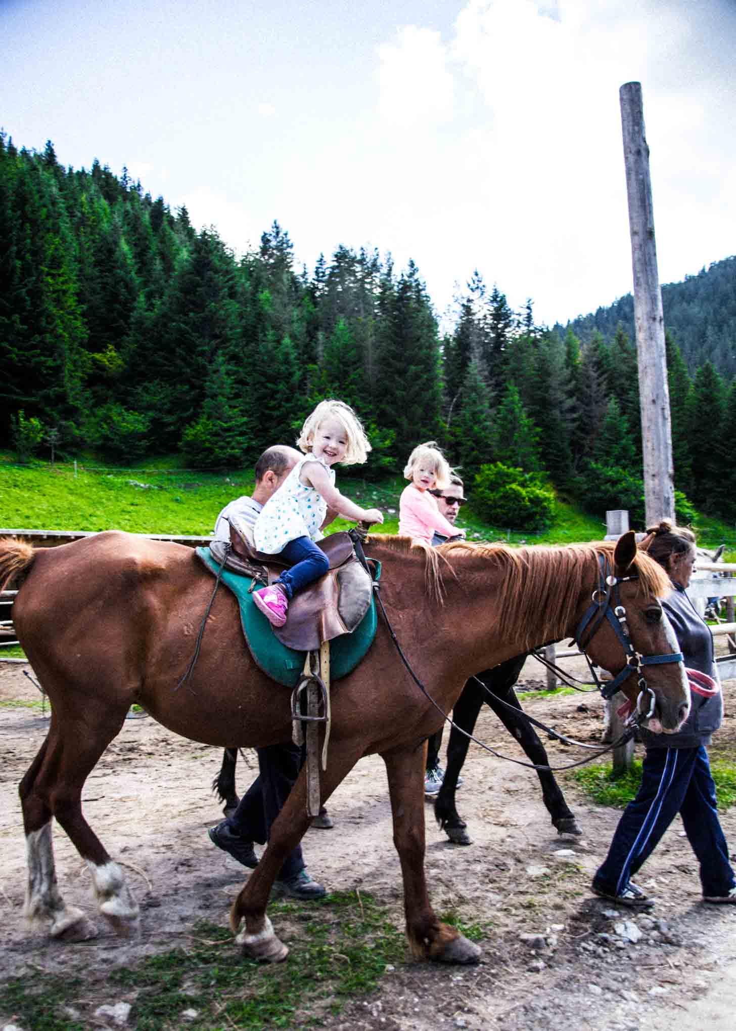 Molly and Clara_Horses
