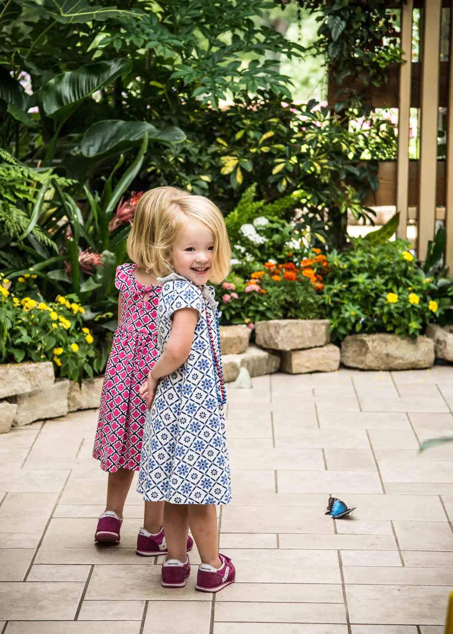 Molly and Clara Butterflies