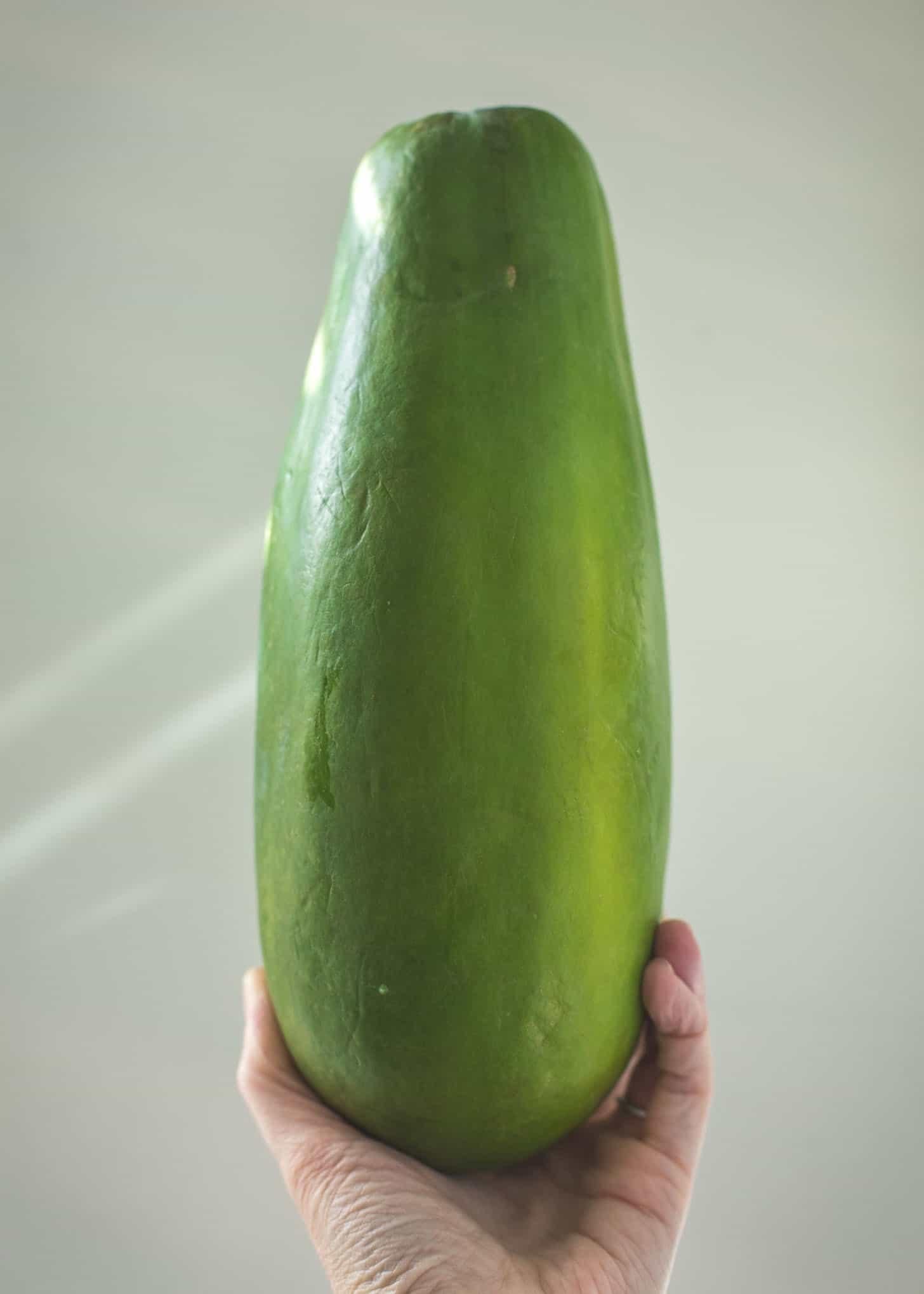 a hand holding a Green papaya
