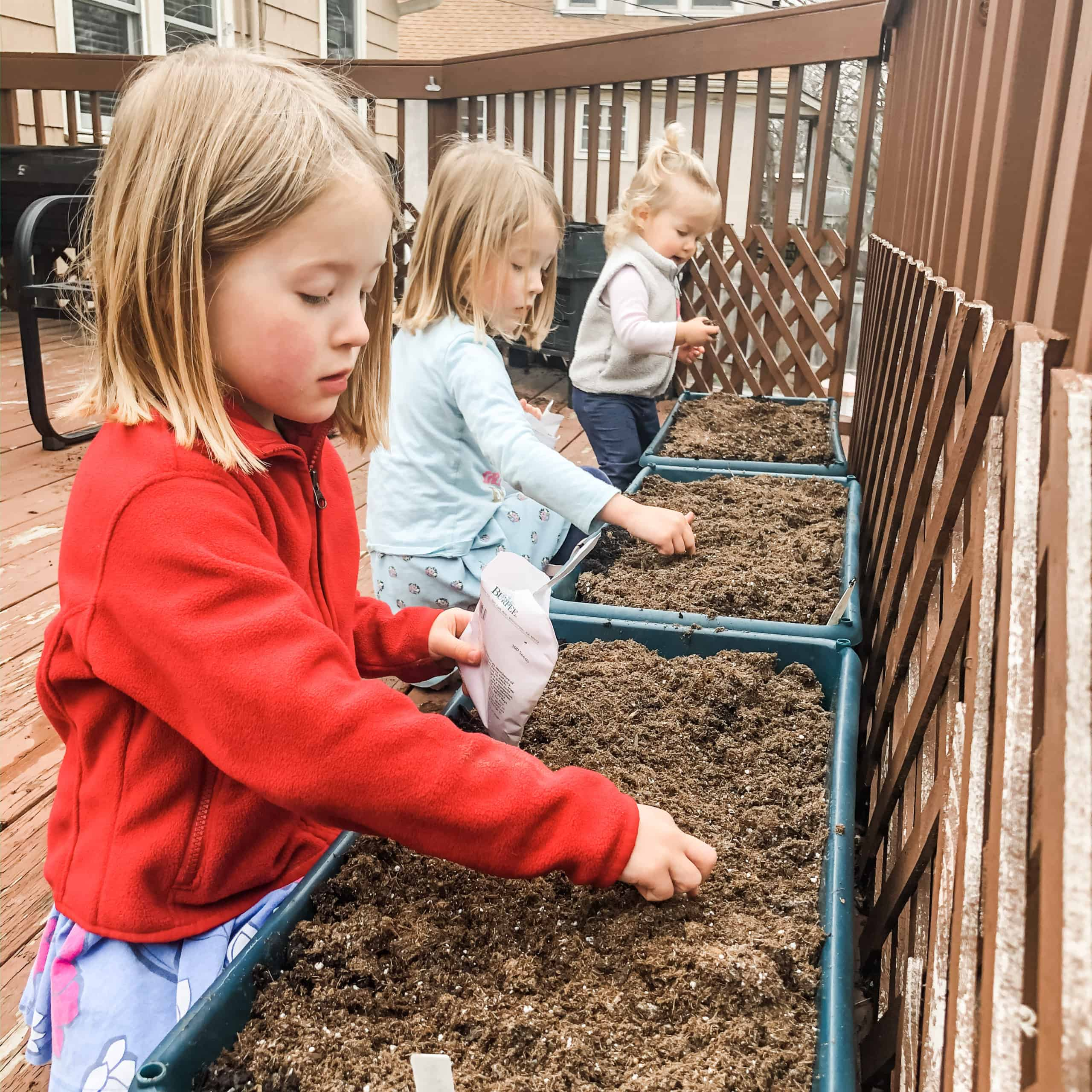 2 young girls and a toddler plant seeds in raised garden beds