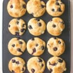 Blueberry Yogurt Muffins in a muffin tin from above