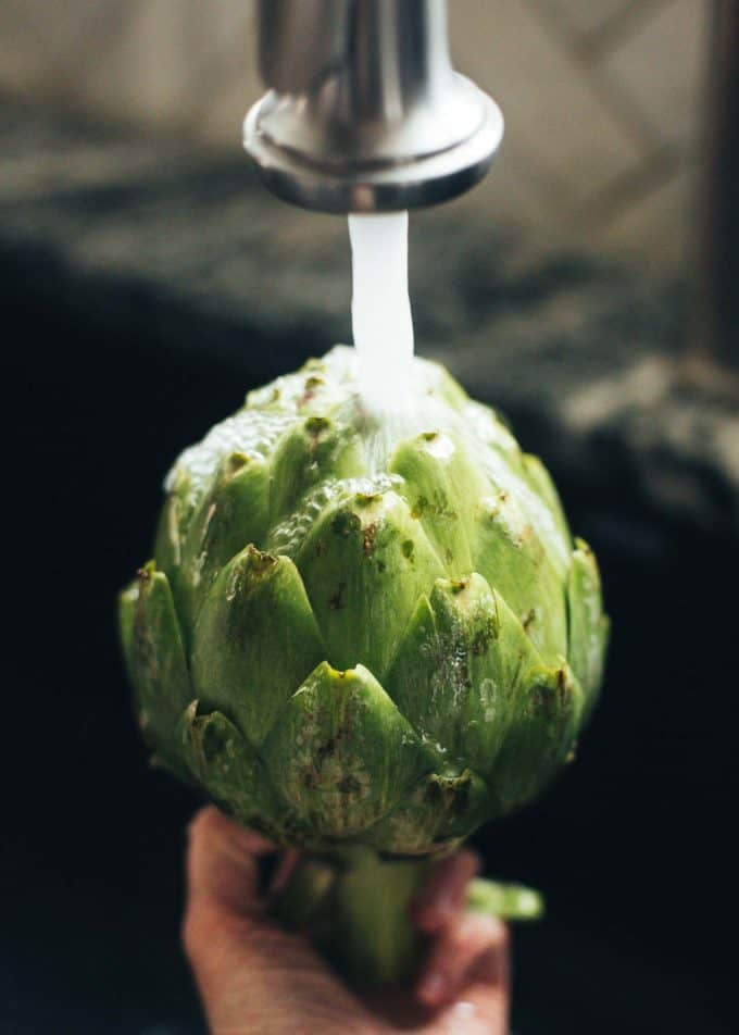 cleaning an artichoke under the faucet