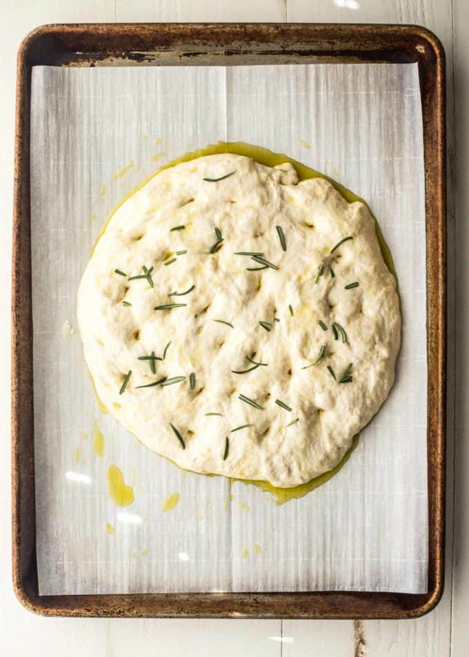 No Knead Focaccia dough on a piece of parchment paper on a sheet pan