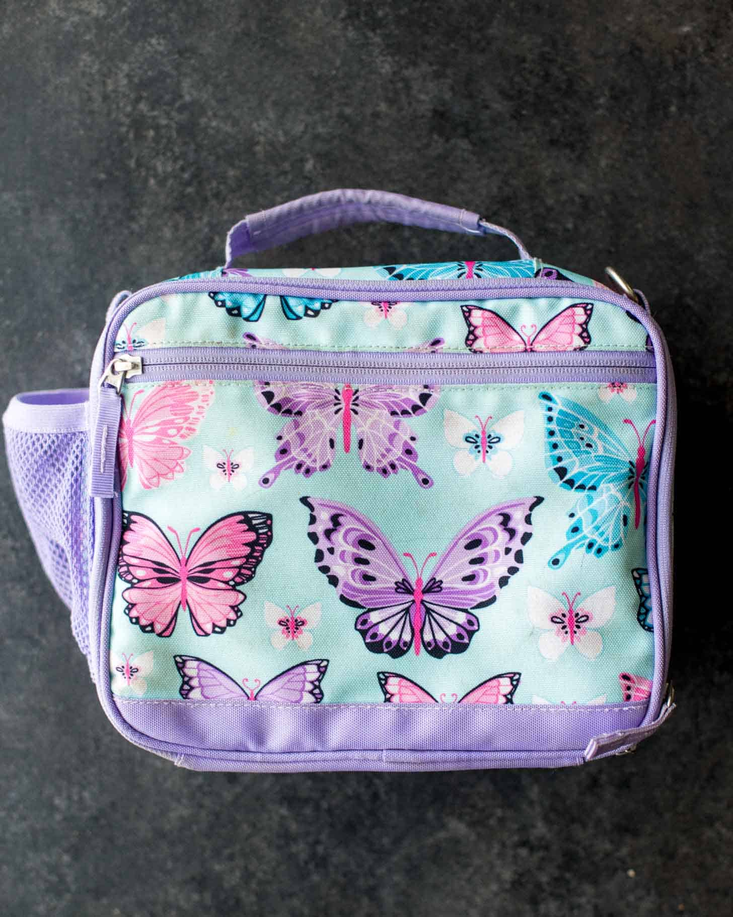 Pottery Barn Mackenzie Cold Pack Lunch Box / Bag