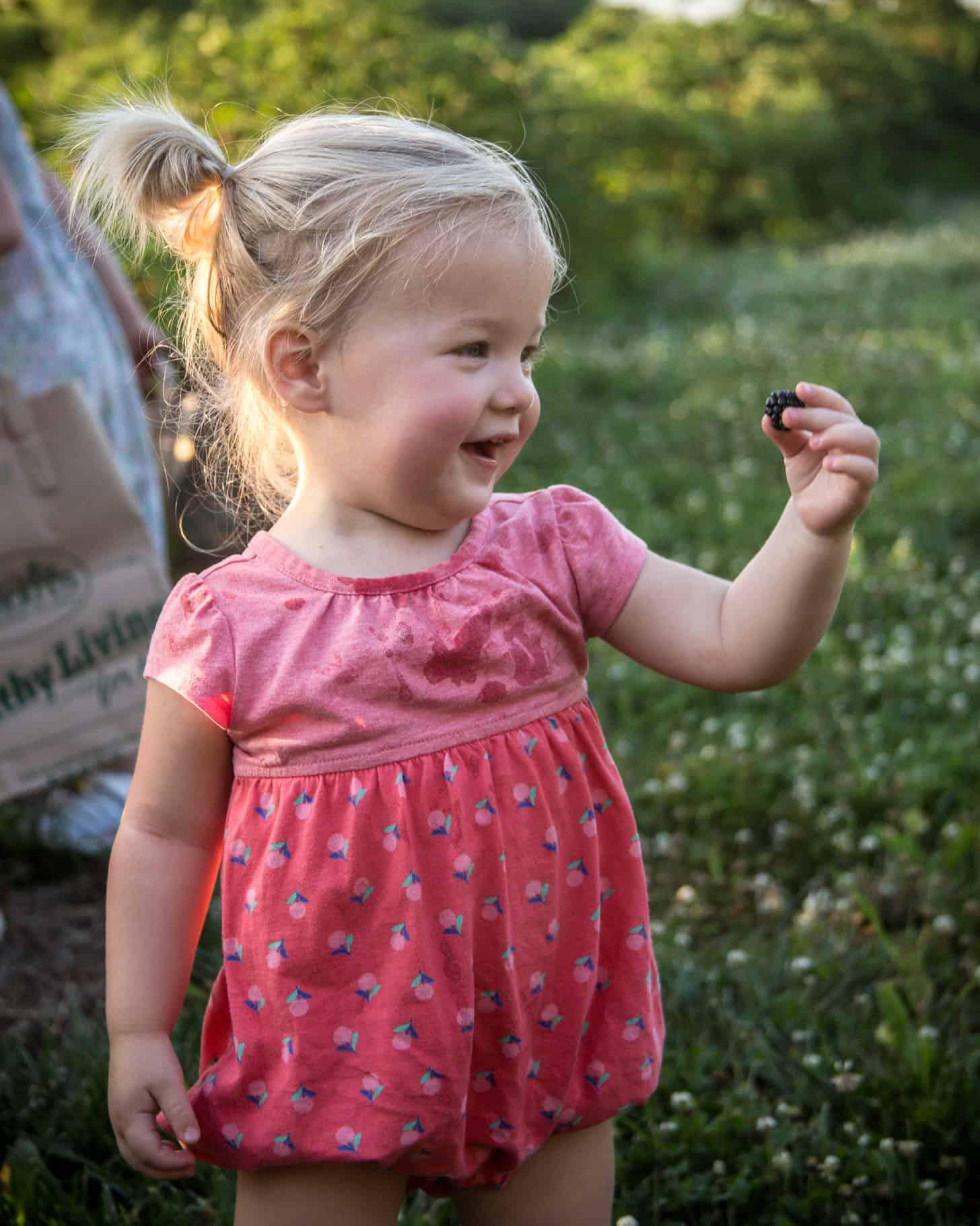 June - blackberries