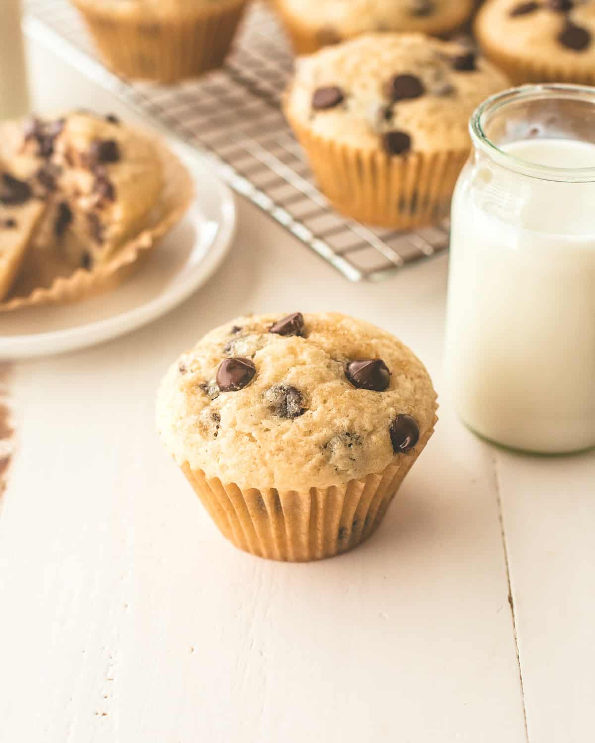 a chocolate chip muffin on a white table