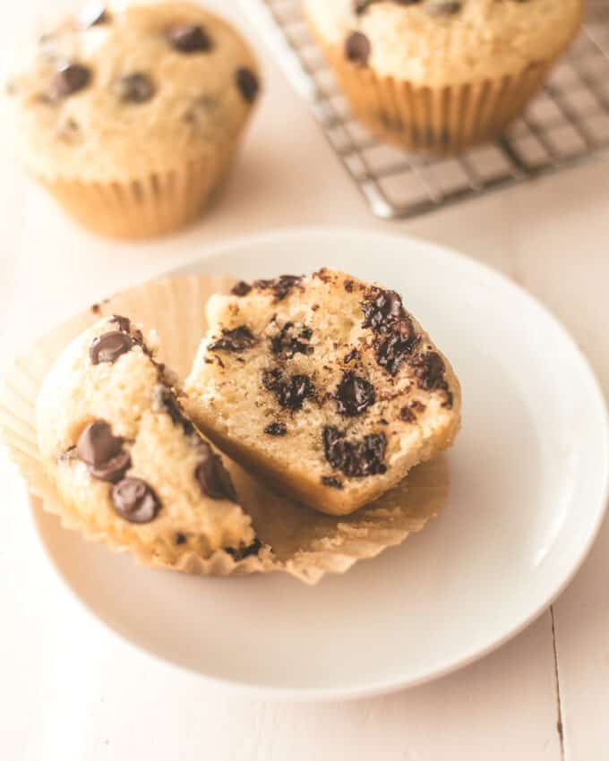 a chocolate chip muffin on a white plate